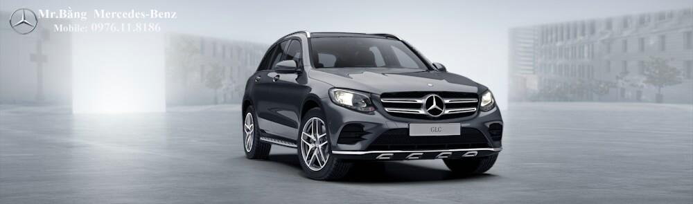 Mercedes GLC 300 4 MATIC 2017 (6)